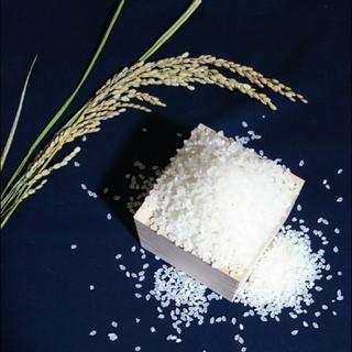 【新米 4kg】農家のコシヒカリ(米/穀物)