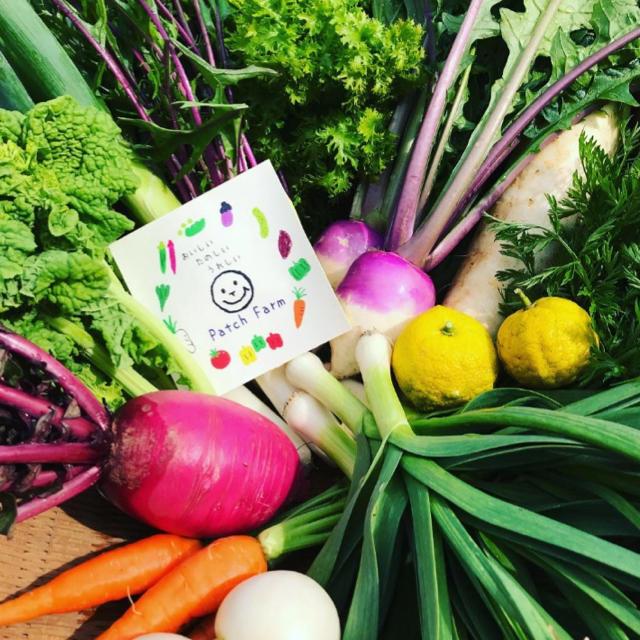 【限定!原木しいたけ入り】渥美半島から直送!旬彩野菜バスケット 食品/飲料/酒の食品(野菜)の商品写真
