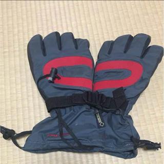 パイネ(PAINE)の冬用手袋(登山用品)