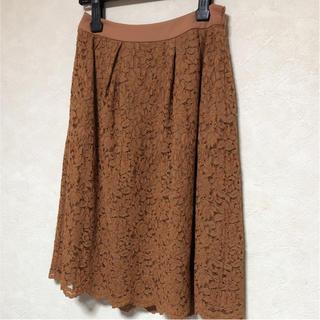 ジェイプレスレディス(J.PRESS LADIES)のレーススカート(ひざ丈スカート)