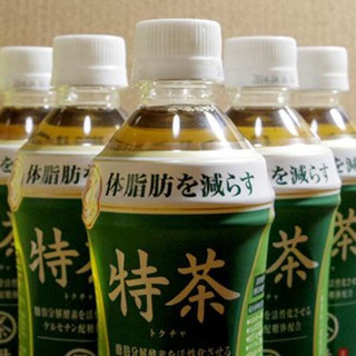 特茶とジャスミン茶2ケース  計4箱(計96本)(茶)