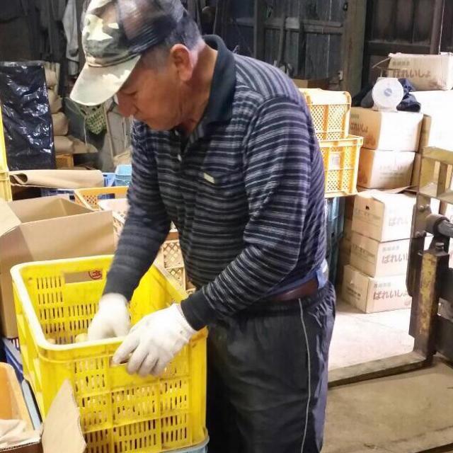 新じゃがいも 長崎県産 にしゆたか10kg 有機栽培 食品/飲料/酒の食品(野菜)の商品写真