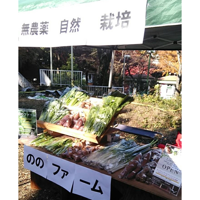 【千葉県発】☆無肥料・無農薬✨自然栽培の野菜☆ 食品/飲料/酒の食品(野菜)の商品写真