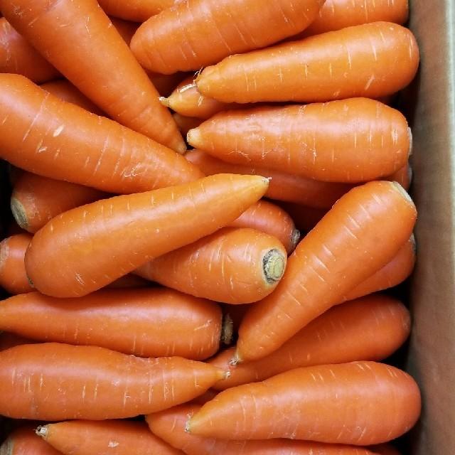 九州産無農薬人参 10kg 食品/飲料/酒の食品(野菜)の商品写真