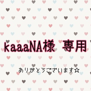 *kaaaNA様専用*(ネックレス)