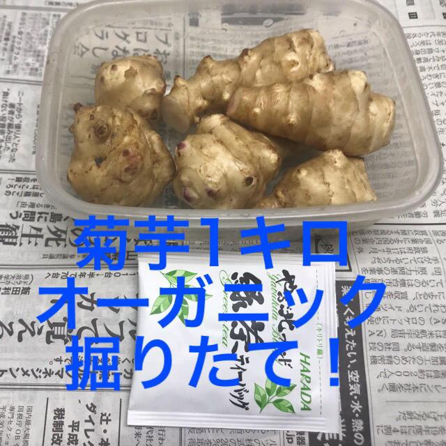 菊芋 オーガニック 新鮮 掘りたて ! 食品/飲料/酒の食品(野菜)の商品写真