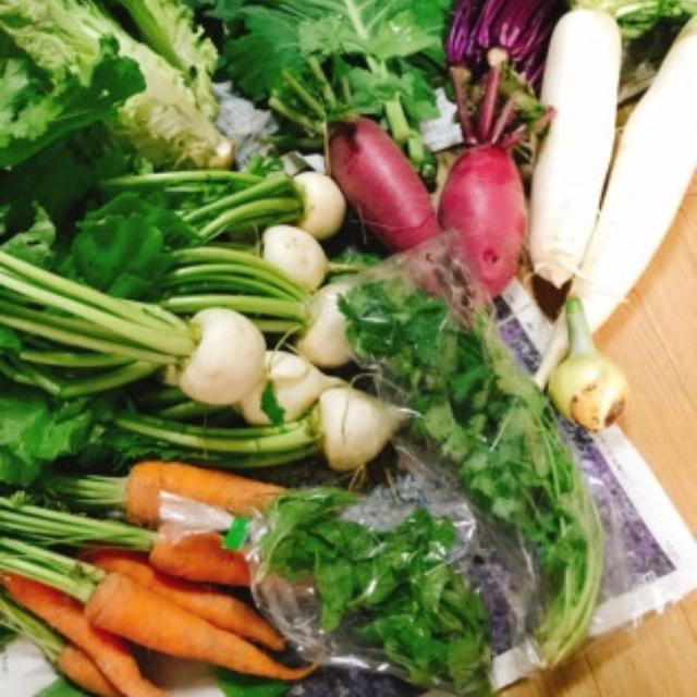 朝採れ野菜詰め合わせ7品 新鮮野菜即配送 食品/飲料/酒の食品(野菜)の商品写真