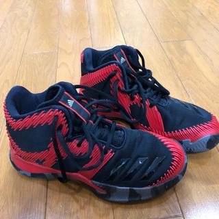 アディダス(adidas)のadidas  バスケシューズ(バスケットボール)