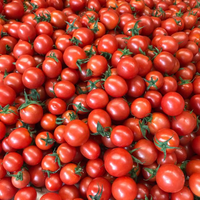 ミニトマト1kg 食品/飲料/酒の食品(野菜)の商品写真