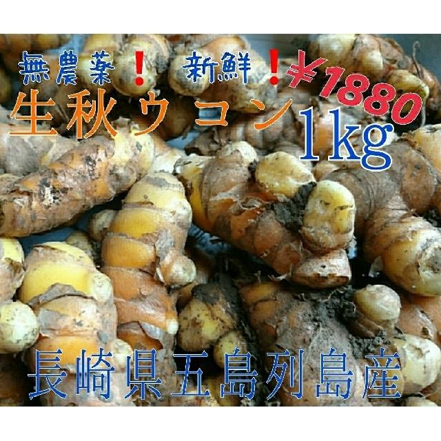無農薬❗【生秋ウコン1㎏。】 ご決済後に収穫❗長崎県五島列島よりお届け❗ 食品/飲料/酒の食品(野菜)の商品写真