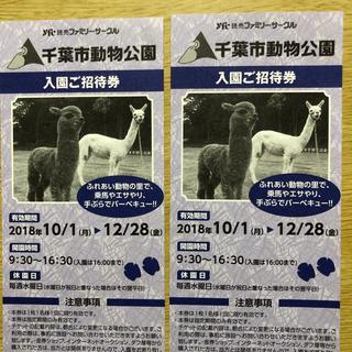 千葉市動物公園 入園無料チケット 2枚(動物園)