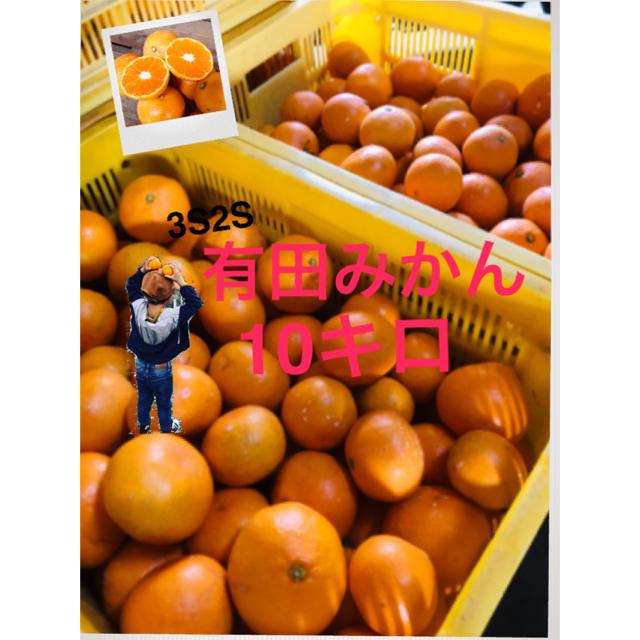 和歌山 有田みかん 2S3S 小粒10キロ 完熟! 食品/飲料/酒の食品(フルーツ)の商品写真