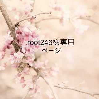root246様専用ページ(ミラー)