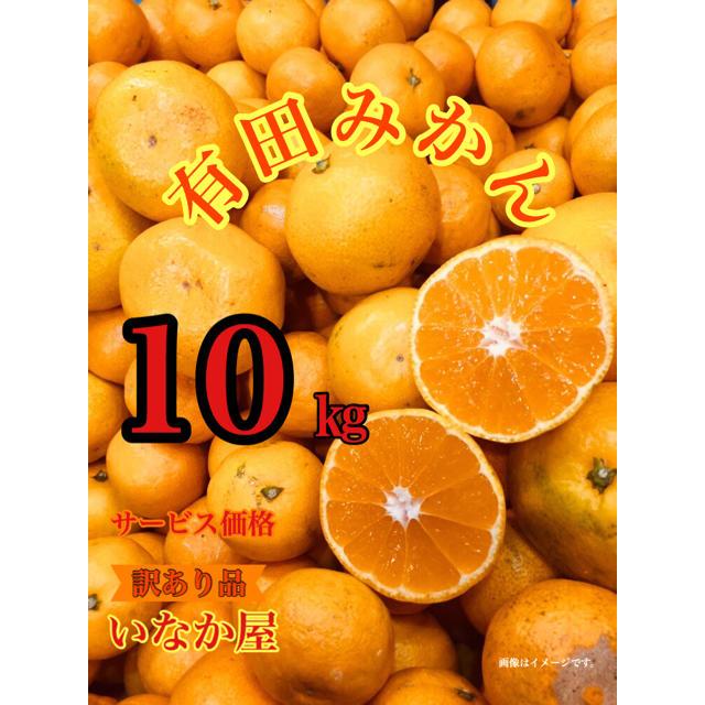 有田みかん 訳あり品  食品/飲料/酒の食品(フルーツ)の商品写真
