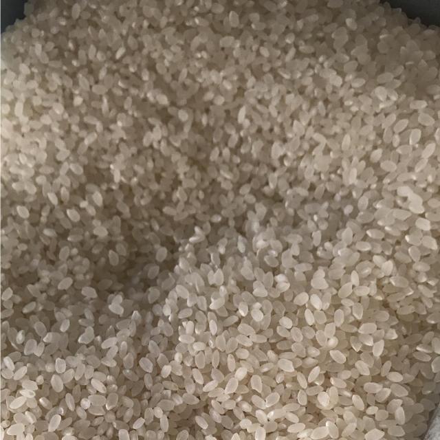 平成30年度島根県産コシヒカリ3キロ 食品/飲料/酒の食品(米/穀物)の商品写真