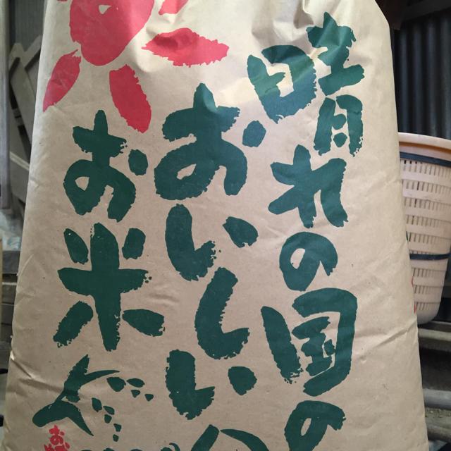 新米 レンゲ米❗️玄米10キロ   食品/飲料/酒の食品(米/穀物)の商品写真