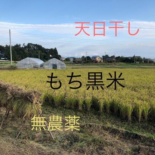 黒米(朝紫)もち黒米玄米1Kg  平成30年産新米 天日干し 無農薬 食品/飲料/酒の食品(米/穀物)の商品写真