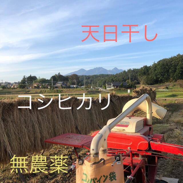 コシヒカリ精米 5Kg  平成30年産新米 天日干し 無農薬 食品/飲料/酒の食品(米/穀物)の商品写真