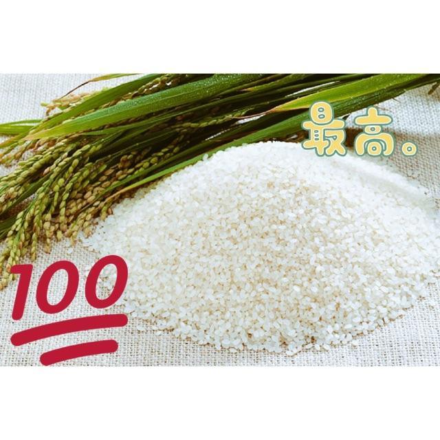 中米…新米10㎏ 食品/飲料/酒の食品(米/穀物)の商品写真
