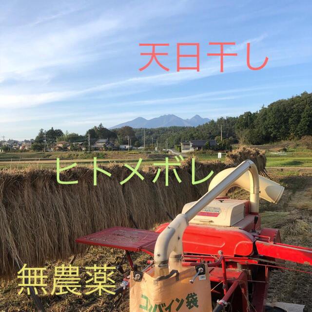 ヒトメボレ精米 5Kg  平成30年産新米 天日干し 無農薬 食品/飲料/酒の食品(米/穀物)の商品写真