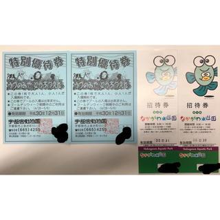宇都宮動物園 なかがわ水遊園 特別優待券 招待券(動物園)