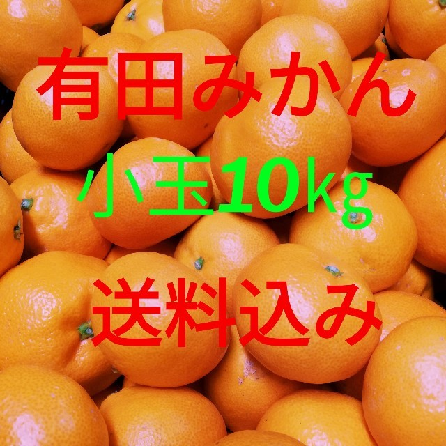 有田みかん🍊小玉🍊10キロ🍊送料込み 食品/飲料/酒の食品(フルーツ)の商品写真