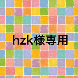 hzk様専用(その他)