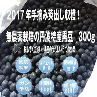 ■新着!2017年手摘み莢出し収穫・無農薬栽培の丹波特産黒豆 300g(野菜)