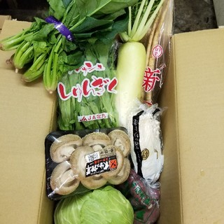 特選野菜 8品詰め合わせ(野菜)