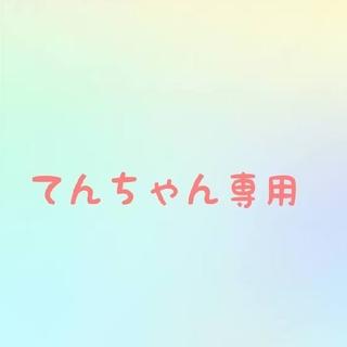 てんちゃん専用(その他)