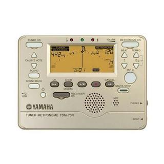 ヤマハ チューナー TDM75R(その他)