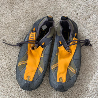 アディダス(adidas)のadidas ダイビング シューズ 24.5 レディース (マリン/スイミング)