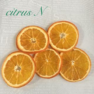 citrus N & Lドライフルーツ(ドライフラワー)
