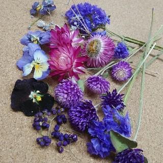 花材69 ドライフラワー パープルセット アロマワックス ハーバリウム リースに(ドライフラワー)