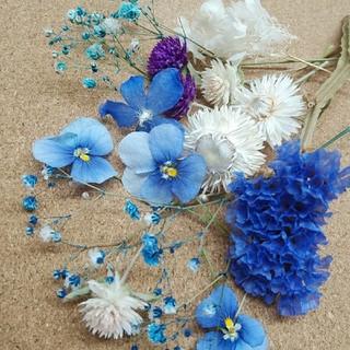 花材70 ドライフラワー ブルー系セット アロマワックス ハーバリウム レジンに(ドライフラワー)