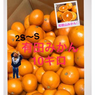 和歌山 有田みかん 2S〜S 小さめ10キロ(フルーツ)