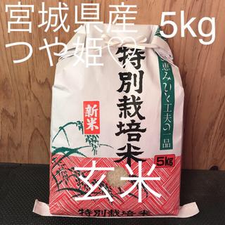 玄米 つやつや もちもち つや姫 5kg星光のキラキラ米(米/穀物)