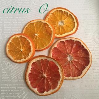 citrus O ドライフルーツ(ドライフラワー)