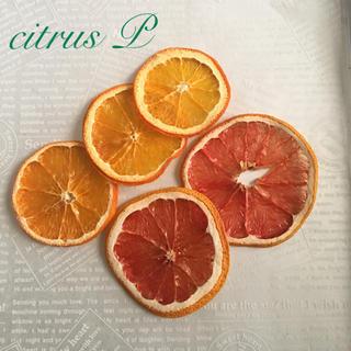 citrus P  ドライフルーツ(ドライフラワー)