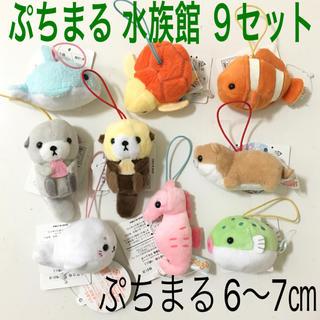 【新品・タグ付】ぷちまる 水族館 9セット ぬいぐるみ(ぬいぐるみ)
