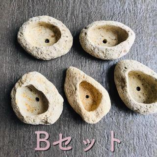 軽石鉢     5個     ハンドメイド  Sサイズ(プランター)