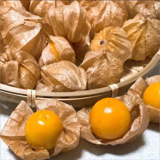 ☆自然栽培☆ 青森県産 オレンジチェリー/フルーツほおずき 約25粒