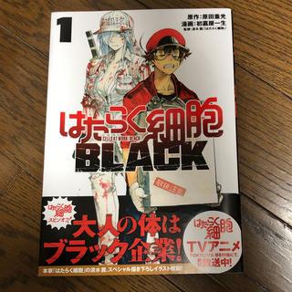 コウダンシャ(講談社)のはたらく細菌 BLACK 1巻 即購入OK!!(少年漫画)
