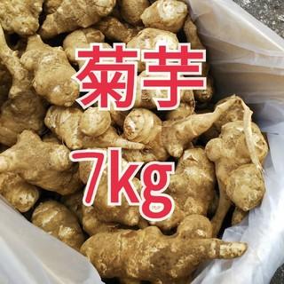 無農薬 キクイモ 菊芋  7キロ