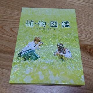 サンダイメジェイソウルブラザーズ(三代目 J Soul Brothers)の植物図鑑DVD(日本映画)