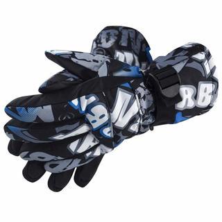 スキー 手袋 スキー グローブ(その他)