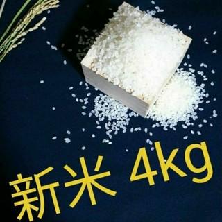 【新米 4kg】農家のコシヒカリ