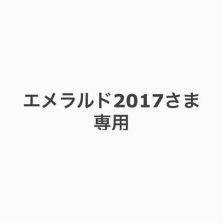 エメラルド2017さま専用(その他)