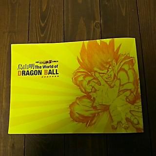 神と神公開記念   鳥山明the World of DRAGON BALL(イラスト集/原画集)