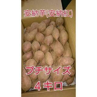 種子島産安納芋(安納紅)プチ芋4キロ